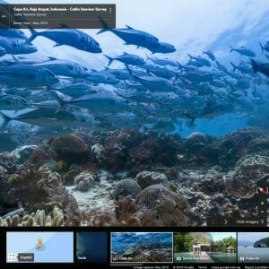 Google Oceans View